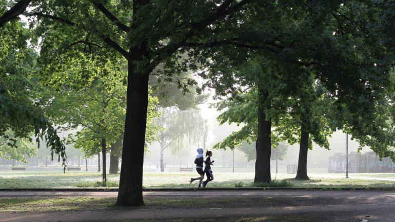 5k jog in a park